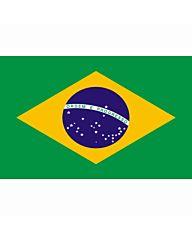 vlag Brazilie, Braziliaanse vlag