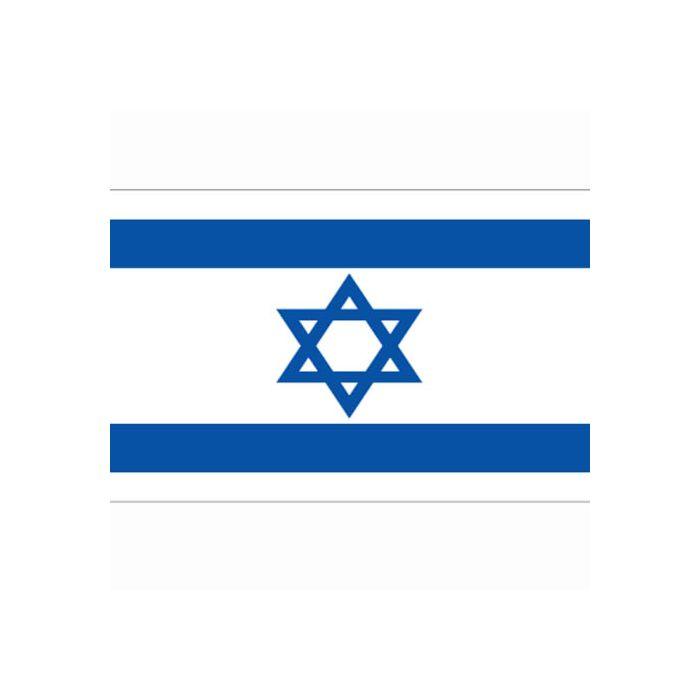 vlag Israel, Israelische vlag