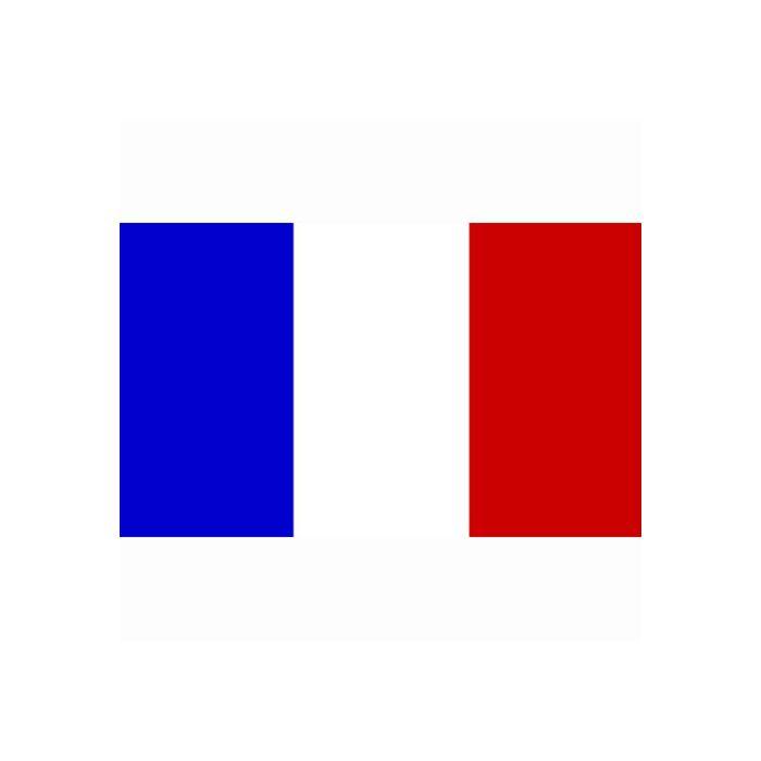 vlag Frankrijk, Franse vlag