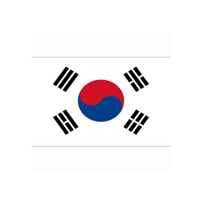 vlag Zuid-Korea, Koreaanse vlag
