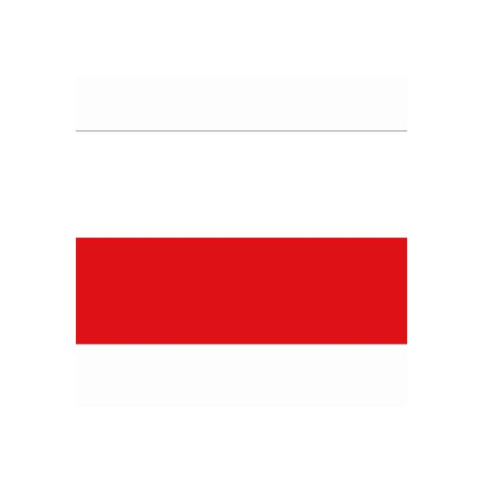 vlag Polen, Poolse vlag