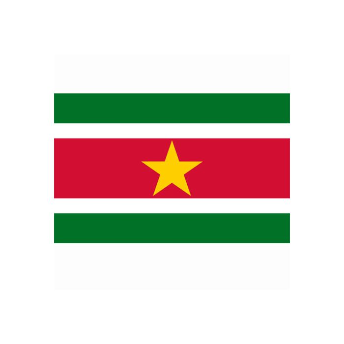 vlag Suriname, Surinaamse vlag