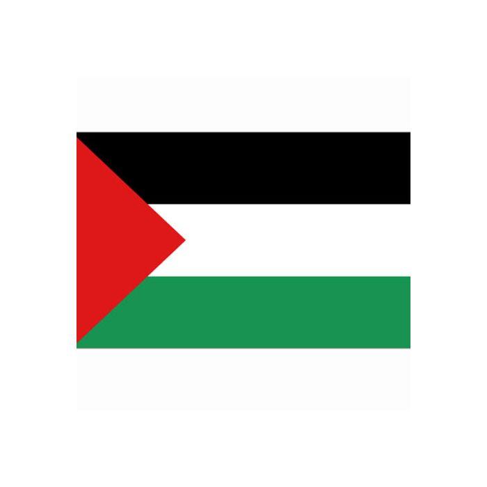 vlag Palestina, Palestijnse vlag