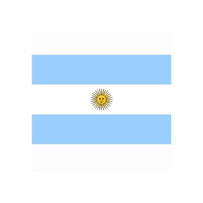Vlag Argentinie, Argentijnse vlag