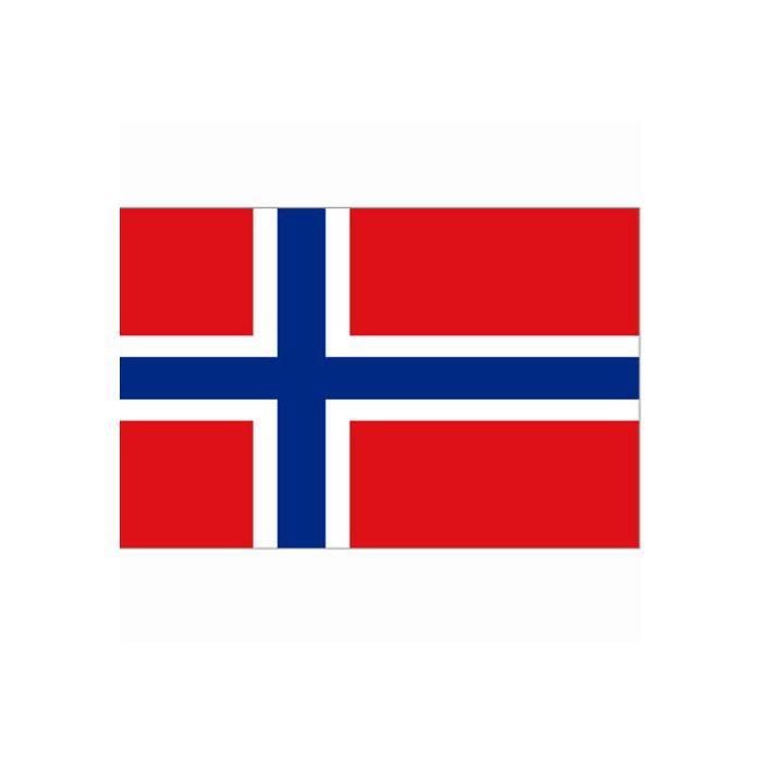Vlag Noorwegen, Noorse vlag